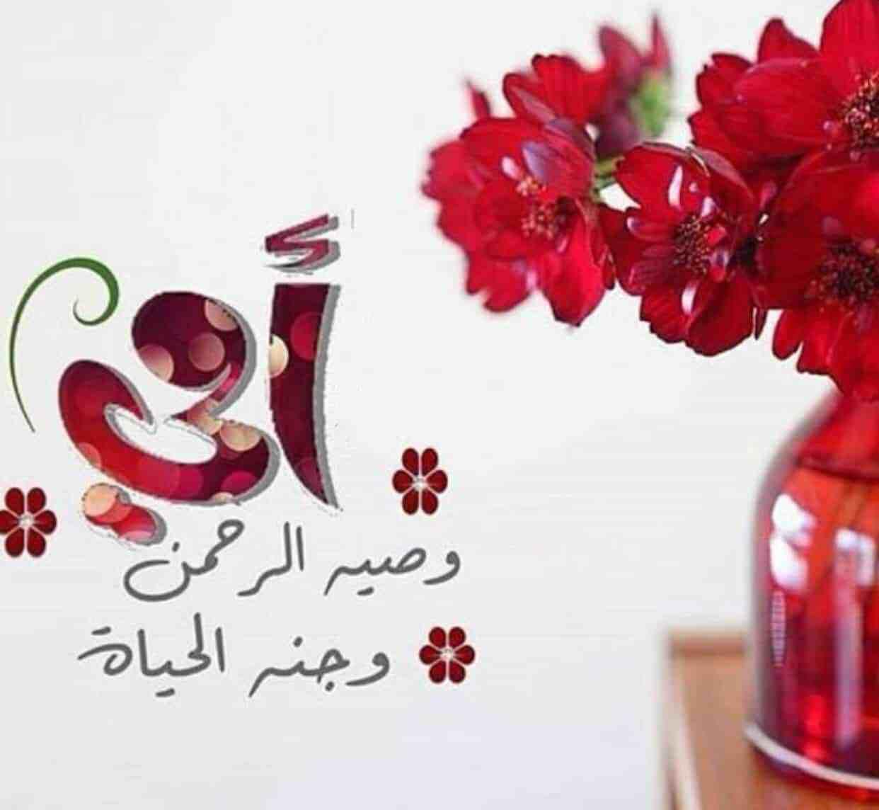 بمناسبة عيد الام .. أجمل عبارات التهنئة و المسجات والرسائل النصية المختصرة للأم في عيد الأم 21 مارس 2021 م امي نبض قلبي، وبهجة الروح